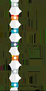 VistaCare International Timeline